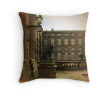 No Visitors - Saverne, France Throw Pillow