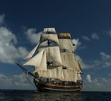 Sails on the Caribbean by Madzia Bryll