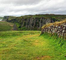 Hadrian's Wall by Jamie  Green