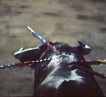 Bullfighting by yoshiaki nagashima