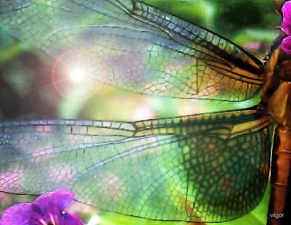 Fly Away by vigor