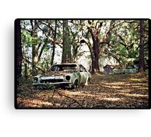 Recycling -Tampa Florida Canvas Print