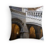 Not Hogwarts Castle… Throw Pillow