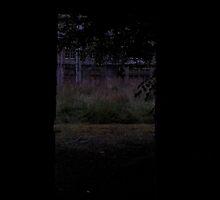 Denbigh Mental Asylum 2. by Hannah Edwards