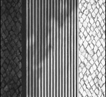 three shades of lines by fourcotts