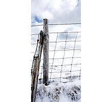 isolated fence Photographic Print
