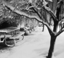 Snowy Evening by Lynn Stratton