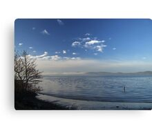 Winter tide Canvas Print