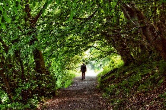 Solitude by Agnes McGuinness