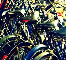 Vintage Bikes by M.C. O'Connor