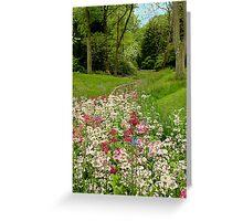 Chanticleer Primula Garden Greeting Card