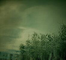 GREEN WATER REFLECTIONS I by June Ferrol