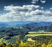 Scenic Lookout by KeepsakesPhotography Michael Rowley