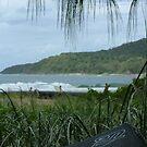 Surf Shade by Jason Kiely