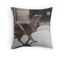 i got it!!! Throw Pillow