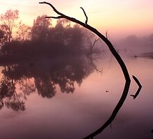 Patho Mornings. by redda