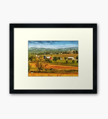 Country - Cows Grazing Framed Print