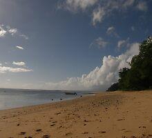The Beach at Abatunphutu by JoshDrez