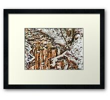 Winter - Natures Harmony Framed Print