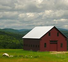 Barn - In The Hills Of Maine by mooselandtours