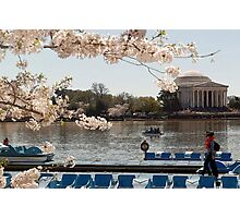 Cherry Blossoms Washington DC Photographic Print