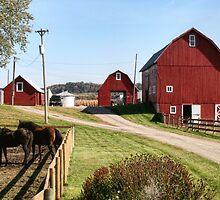 Red Barns by Nadya Johnson