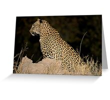 Female Leopard Greeting Card