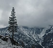 Upper Falls Trail Snow Line by Bob Moore