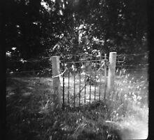 pretty gate  by Sally McColl