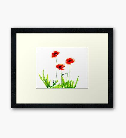 Flanders Poppies Framed Print