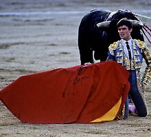 Bullfighting−2、SPAIN by yoshiaki nagashima