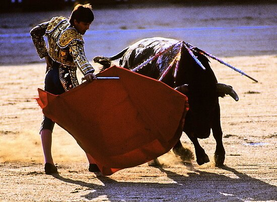 Bullfighting−4、SPAIN by yoshiaki nagashima