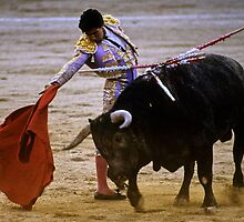 Bullfighting−7、SPAIN by yoshiaki nagashima