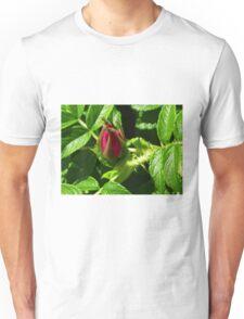 Pretty Rosebud T-Shirt