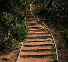 Portsea,Victoria,Australia by Rosina  Lamberti