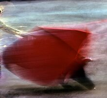 Bullfighting−16、SPAIN by yoshiaki nagashima