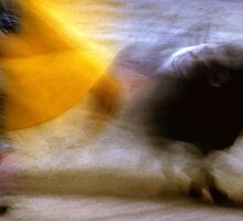 Bullfighting−18、SPAIN by yoshiaki nagashima