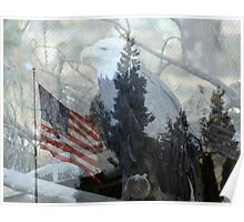 Eagle and Old Glory Poster