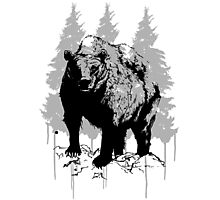 Grizzly bear drawing Photographic Print