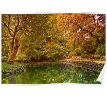 Autumn at Alfred Nicholas Memorial Gardens Poster