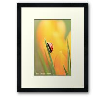 Lady Luck in the search for gold Framed Print