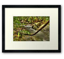 Daintree Creek Framed Print