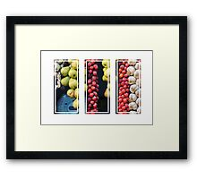 Beauty in tomatoes, garlic and pears triptych Framed Print