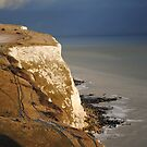 The White Cliffs of Dover by BeckyMP