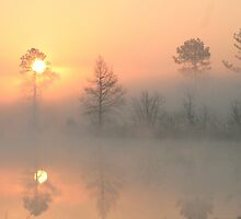 March Sunrise by Dewese Milstead