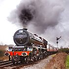 Stanier's Giant by Tom  Holland