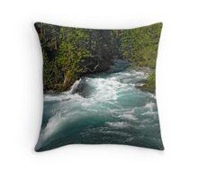 McKenzie Power Throw Pillow