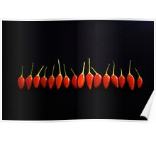 Little Red Things All in a Row Poster