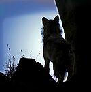 Let The Wolves Howl At The Moon by Ryan Davison Crisp