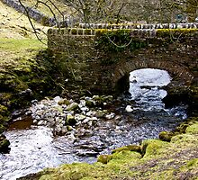 Cray Gill Beck Bridge by Trevor Kersley